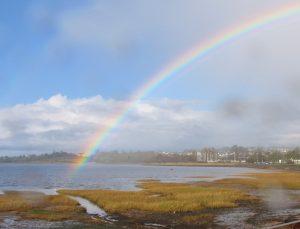 a rainbow over the Exe Estuary