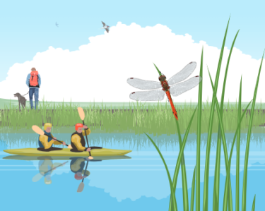 Picture of canoeists