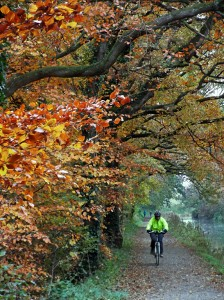 A cyclist on the Canal path.