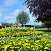 Barnstaple Square